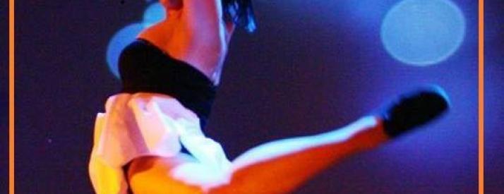Ricerca ballerini/e coreografi/e partenza estate 2016 Italia ed estero